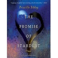 The Promise of Stardust by Priscille Sibley