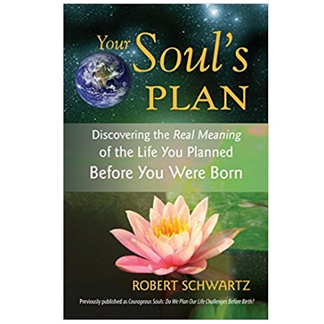 Your Soul's Plan PDF Download