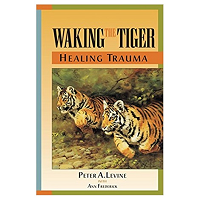 Waking the Tiger by Peter PDF