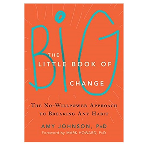 The Little Book of Big Change by Amy Johnson ePub