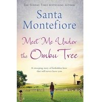 Meet Me Under the Ombu Tree by Santa Montefiore ePub