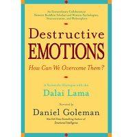 Download Destructive Emotions by Daniel Goleman PDF