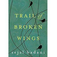 Download Trail of Broken Wings by Sejal Badani PDF
