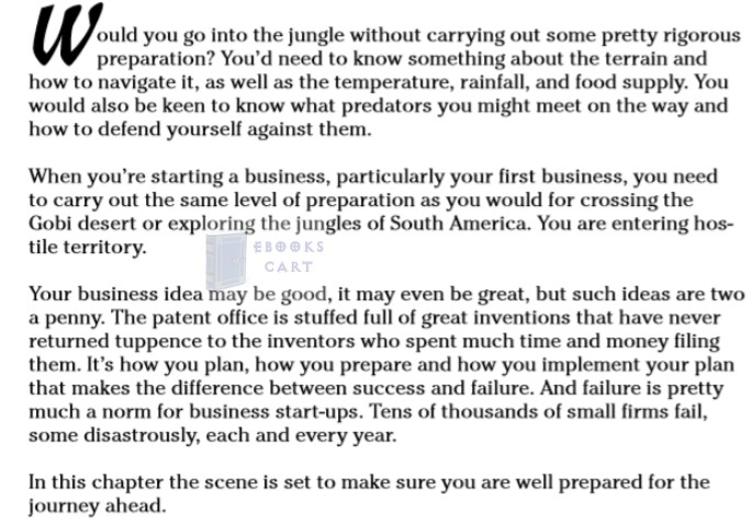 Starting a Business All-In-One For Dummies by Consumer Dummies epub Download