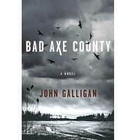 Bad Axe County by John Galligan PDf