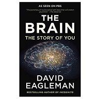 The Brain by David Eagleman ePub Download Free