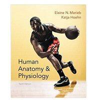 Elaine N. Marieb books pdf