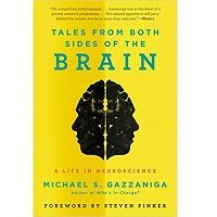 Tales from Both Sides of the Brain by Michael S. Gazzaniga PDF