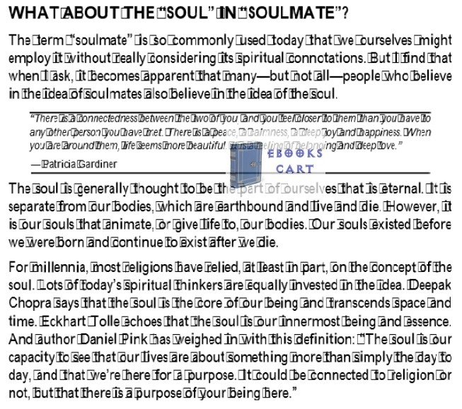 When Your Soulmate Dies by Alan Wolfelt epub Download