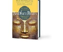 Buddha's Brain by Rick Hanson PDF Download