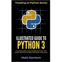 Illustrated Guide to Python 3 by Matt Harrison PDF