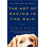 The Art of Racing in the Rain by Garth Stein PDF