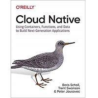 Cloud Native by Boris Scholl PDF