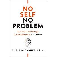 No Self, No Problem by Chris Niebauer PDF