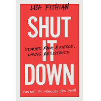 Shut It Down by Lisa Fithian PDF