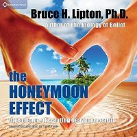 The Honeymoon Effect by Bruce H. Lipton PDF Download