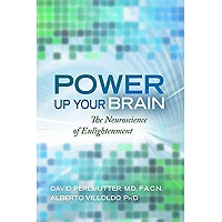 Power Up Your Brain by David Perlmutter PDF