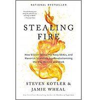 Stealing Fire by Steven Kotler PDF