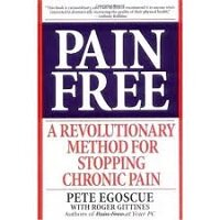 Pain Free at Your PC by Pete Egoscue PDF Download