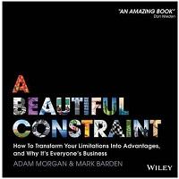 A Beautiful Constraint by Adam Morgan PDF Download