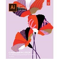 Adobe Illustrator Classroom in a Book (2020 release) by Brian Wood PDF Download