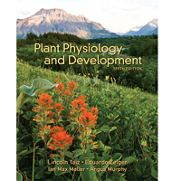 Download Plant Physiology and Development 6th Edition by Lincoln Taiz PDF